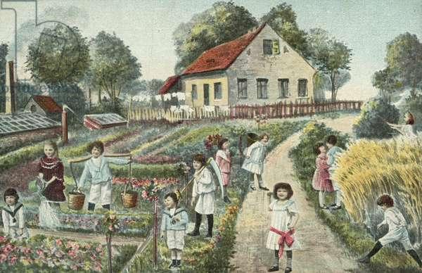 Children in a garden or allotment (colour litho)