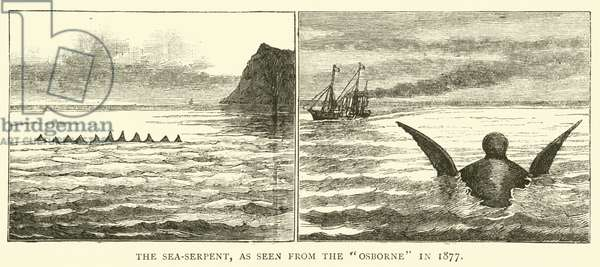 The Sea-Serpent, as seen from the