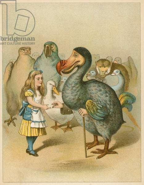 The Dodo solemnly presented the thimble from Alice's Adventures in Wonderland