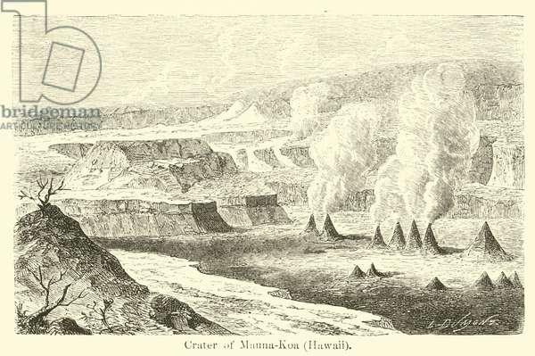Crater of Mauna-Koa, Hawaii (engraving)