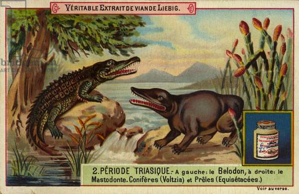 Dinosaurs and plants of the Triassic period (colour litho)