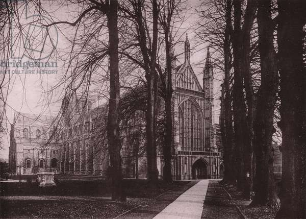 Winchester Cathedral from Avenue (b/w photo)
