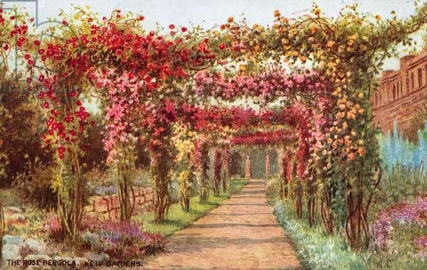 The Rose Pergola, Kew Gardens (colour litho)