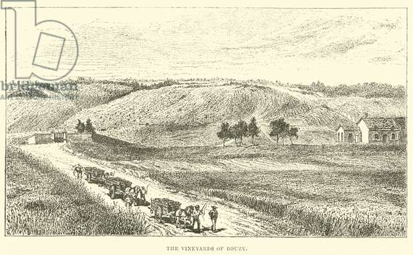 The Vineyards of Bouzy (engraving)