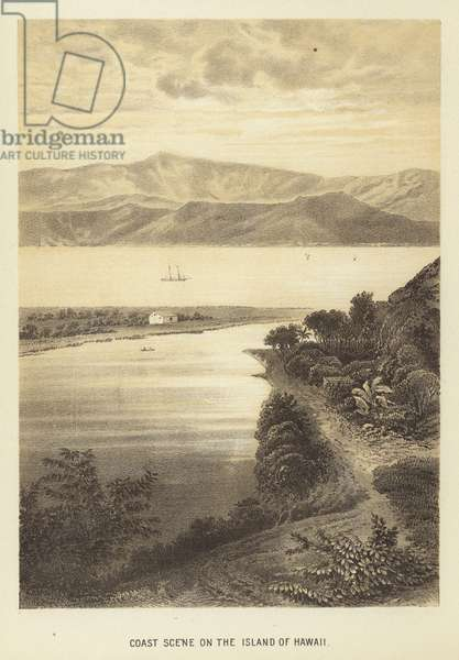 Coast scene on the Island of Hawaii (litho)
