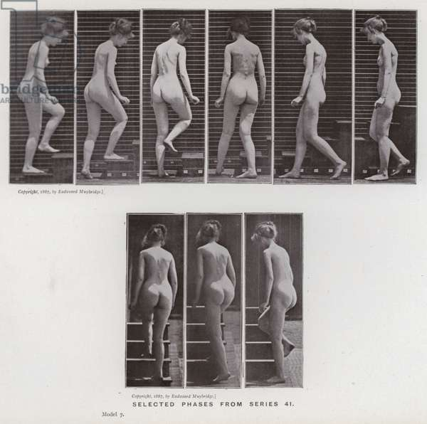 The Human Figure in Motion: Selected phases from series 41 (b/w photo)