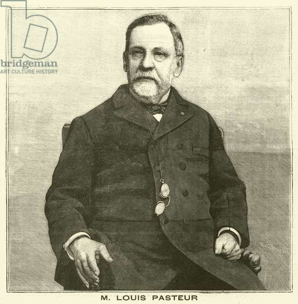 Louis Pasteur, French microbiologist (engraving)
