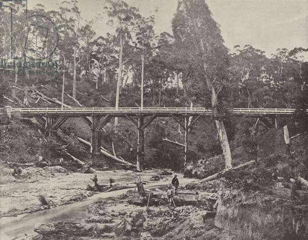 A Miner's Claim, near Daylesford, Victoria (b/w photo)
