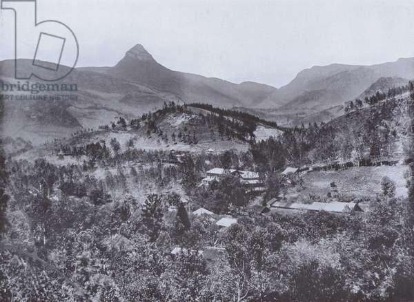 Scene in the Maskeliya District, Showing Adam's Peak and the Rough Nature of the Ground (b/w photo)