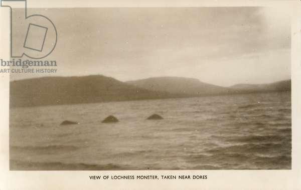 View of Lochness Monster, taken near Dores (b/w photo)