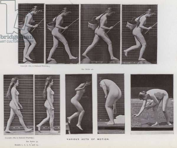 The Human Figure in Motion: Various acts of motion (b/w photo)