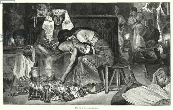 Death of the Firstborn: the last of the Ten Plagues of Egypt (litho)