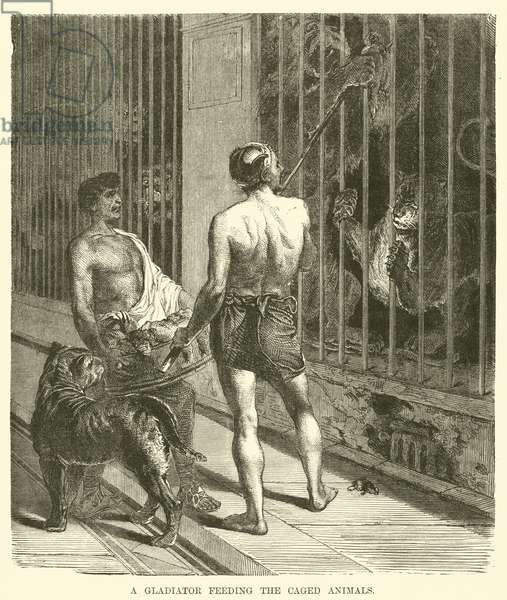 A gladiator feeding the caged animals (engraving)