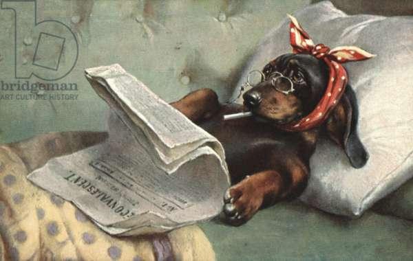 Dog reading a newspaper (colour litho)