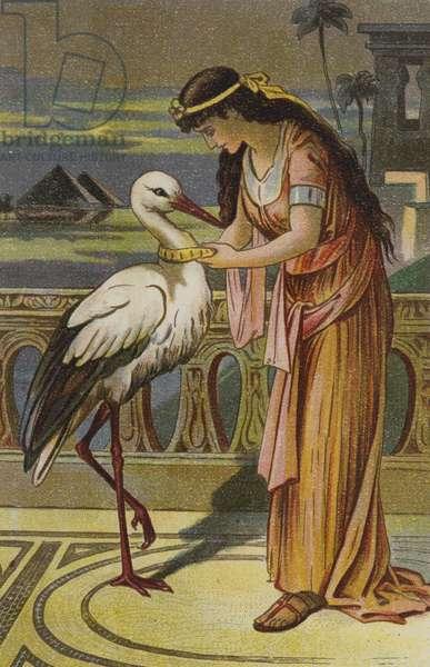 The Marsh King's Daughter (chromolitho)
