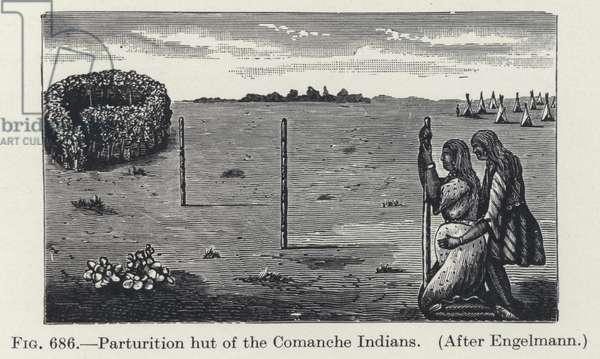 Parturition hut of the Comanche Indians (litho)