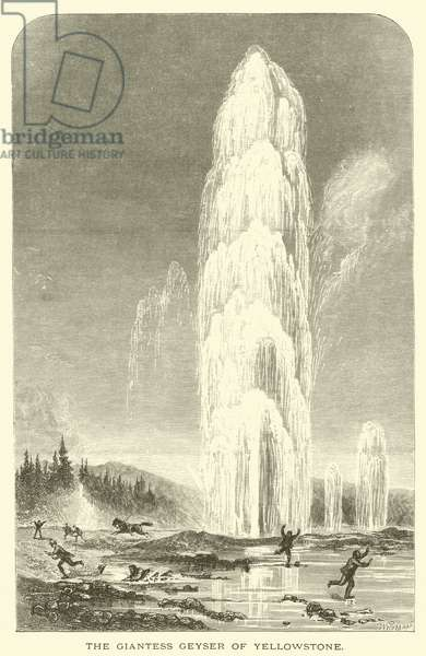 The giantess geyser of Yellowstone (engraving)
