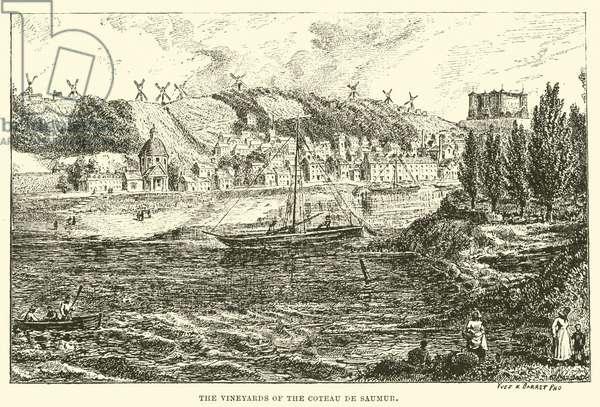 The Vineyards of the Coteau de Saumur (engraving)