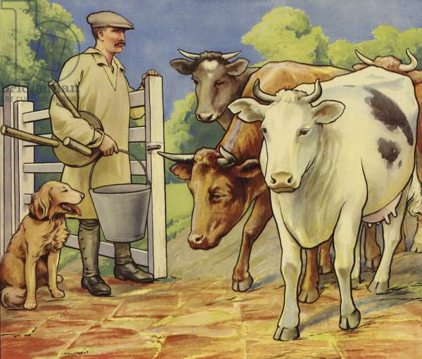 Milking time (colour litho)