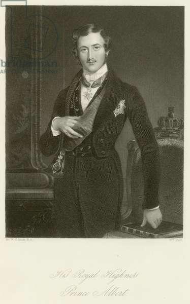 His Royal Highness Prince Albert (engraving)