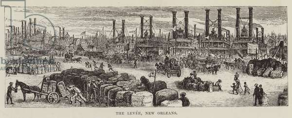 The Levee, New Orleans (engraving)