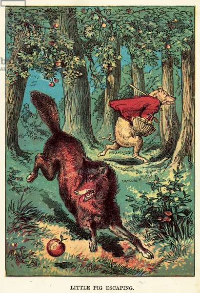 Little pig escaping (coloured engraving)