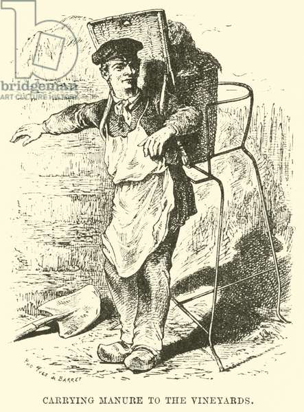 Carrying Manure to the Vineyards (engraving)