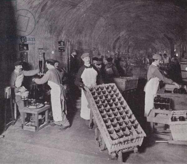 Champagne vaults (b/w photo)