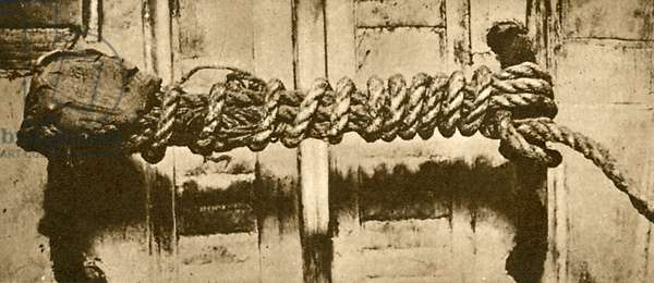 Rope and seal intact to Tutankhamen's tomb (b/w photo)