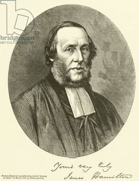 The Reverend James Hamilton, DD, FLS (engraving)