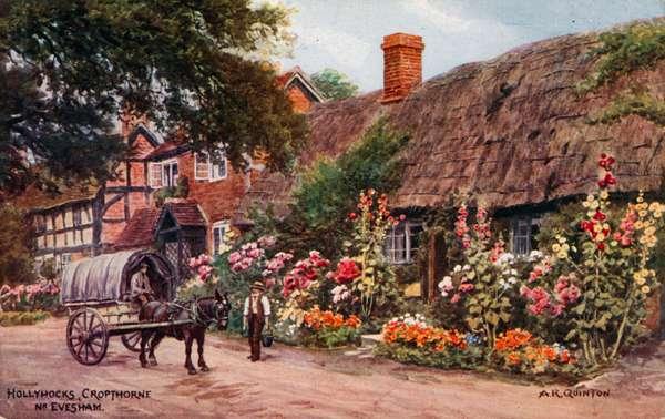 Hollyhocks, Cropthorne, Evesham (colour litho)
