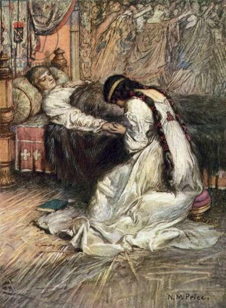 Tennyson, The Princess (colour litho)