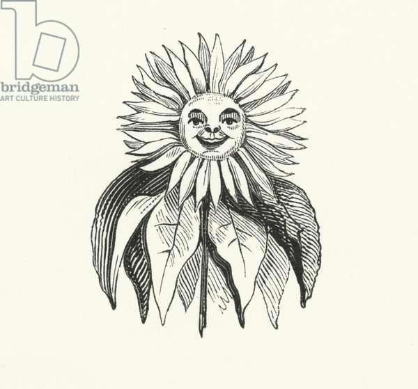 Sunflower (engraving)