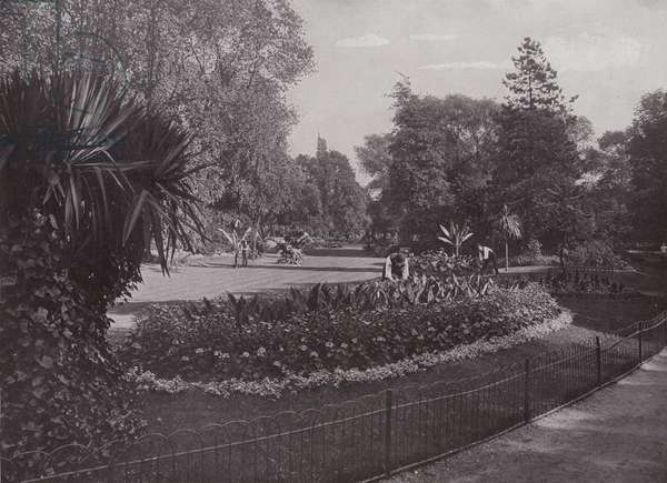 Sub-Tropical Gardens, Battersea Park (b/w photo)
