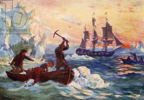 Captain Cook's expedition obtaining ice for a supply of fresh water (colour litho)