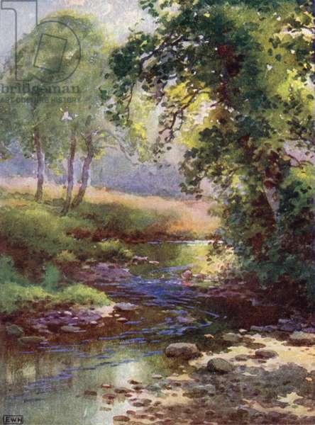 The Brook (colour litho)
