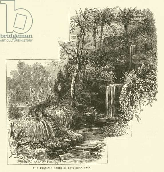 The Tropical Gardens, Battersea Park (engraving)