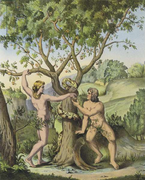 Eve presenting the apple from the Tree of the Knowledge of Good and Evil to Adam (colour litho)