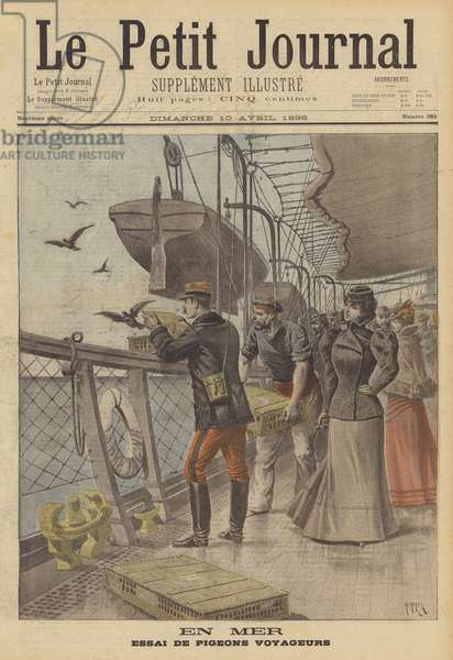 Trial of carrier pigeons at sea (colour litho)