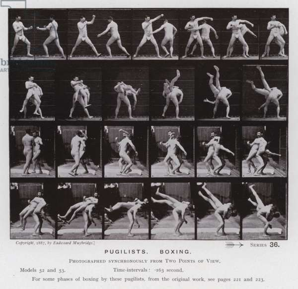 The Human Figure in Motion: Pugilists, Boxing (b/w photo)