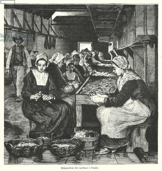 Women preparing sardines (engraving)