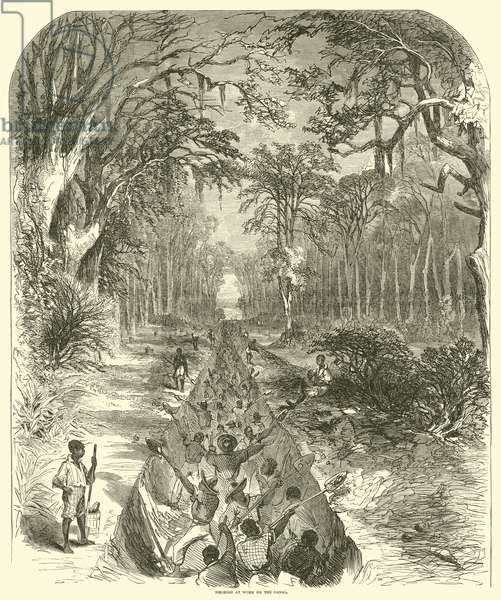 Negroes at work on the canal, March 1863 (engraving)