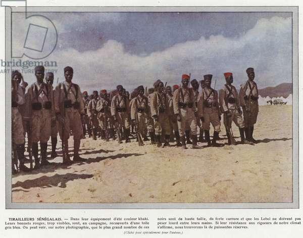 Tirailleurs Senegalais (photo)
