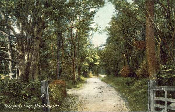 Tennyson's Lane, Haslemere (colour photo)