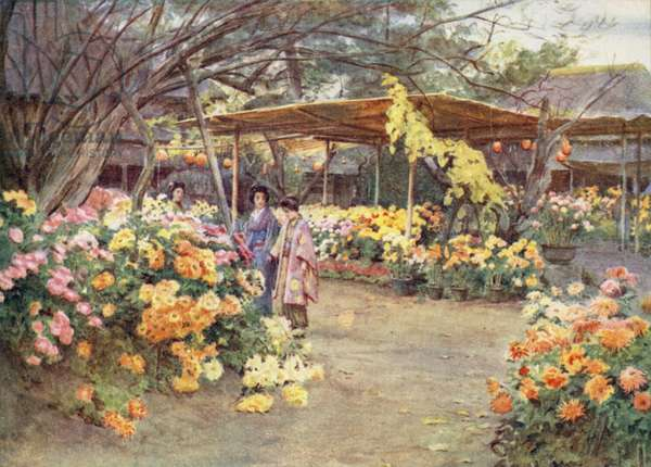 Viewing Chrysanthemums, Mukojima, Tokio (colour litho)