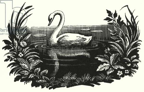 Hans Christian Andersen: The Ugly Duckling (litho)