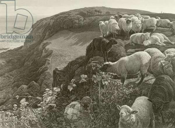 On the hillside (engraving)