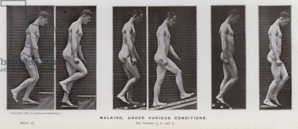 The Human Figure in Motion: Walking, under various conditions (b/w photo)