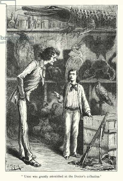Unac was greatly astonished at the doctor's collection (engraving)