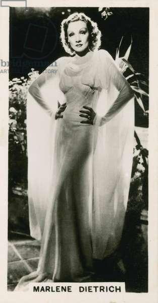 Marlene Dietrich (b/w photo)